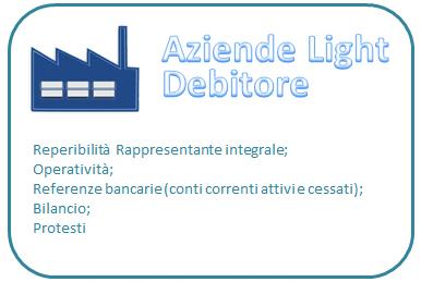Report debitore azienda light (prezzo compreso IVA)